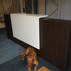 Reception Furniture Wenge/White Reception desk with pedestal