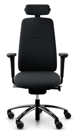 Ergonomic Chairs for Home Working  New RH Logic 220