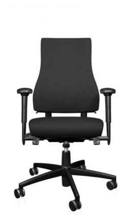 Ergonomic Chairs for Home Working Axia 2.4 Ergonomic chair