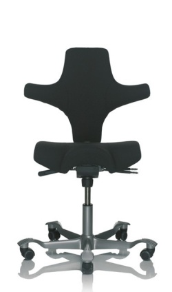 Ergonomic Chairs for Home Working HAG Capisco 8106
